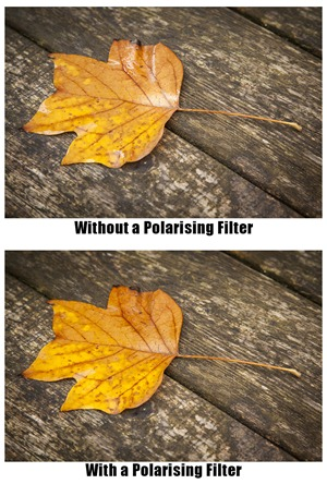 polarising filter - 2