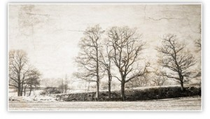 Balcombe-winter-FB