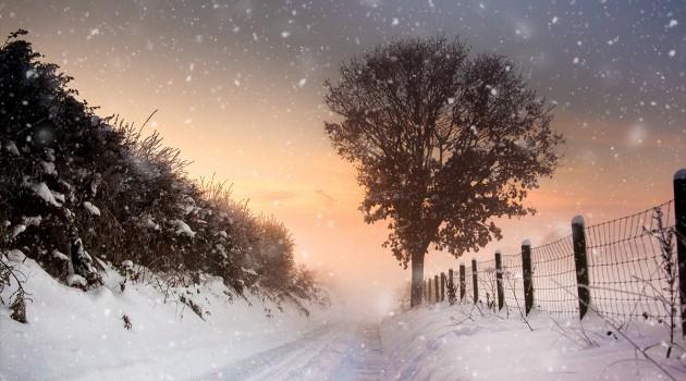 Instant Snow-1