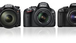 Which Camera