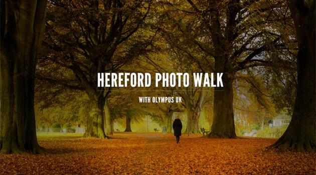 Hereford-Slate