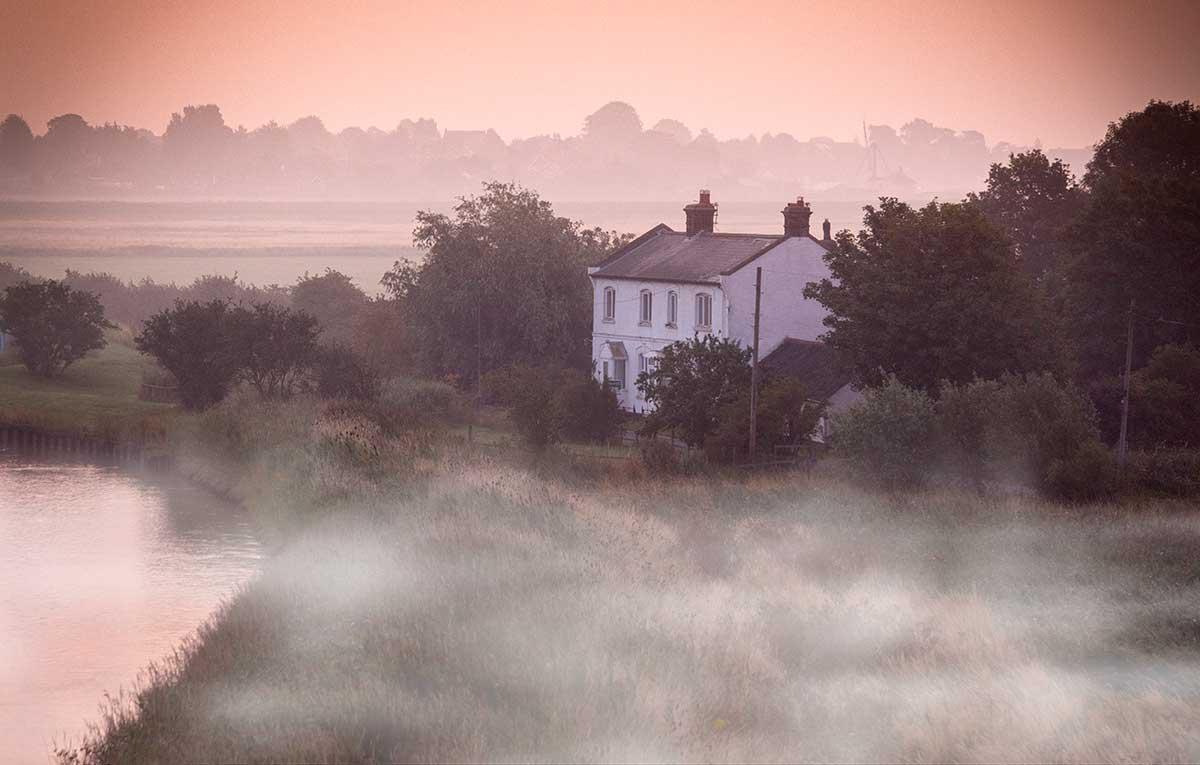 Mist & Fog Brushes | Gavtrain com
