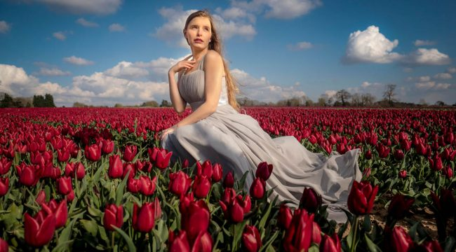 Our Time Lapse Photo Sequence Tulips Go >> Gavtrain Com The Place To Learn Photography And Photoshop Page 21